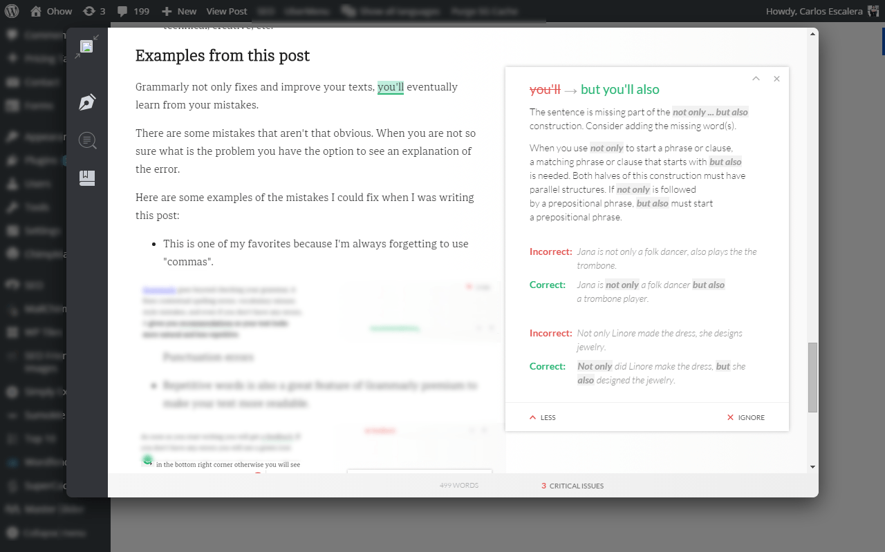 grammarly full explanation